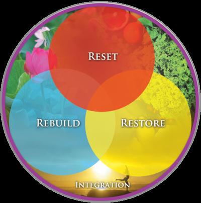 Wellness-Process